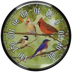 AcuRite 01781 12.5-Inch Wall Thermometer, Songbirds