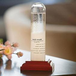 "Bits and Pieces - Admiral Fitzroy Storm Glass - 6-1/2"" Tall"