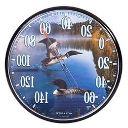 Accurite Loons Thermometer